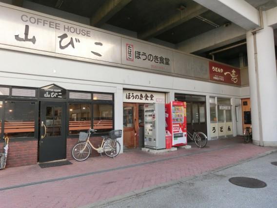 高知市中央卸売市場 開放デイ