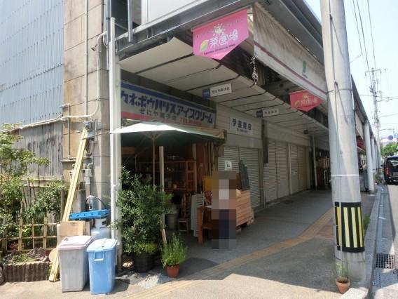 高知市菜園場町のぜにや菓子店で食べれるかき氷は行列必至!自信持っておすすめできます